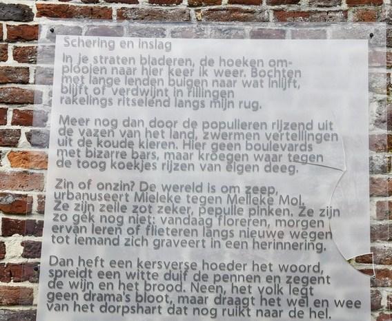 Editiepajot Galmaarden Gedicht Beschadigd
