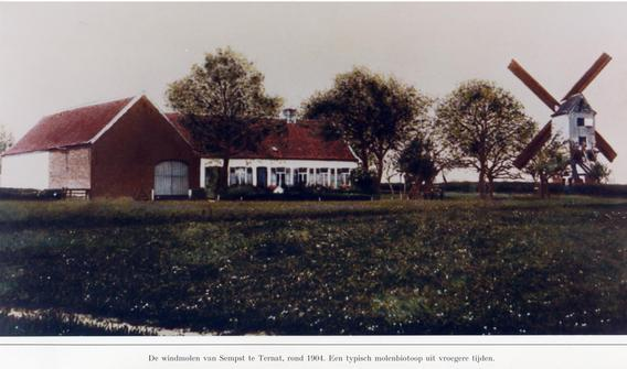 Windmolensempst1904